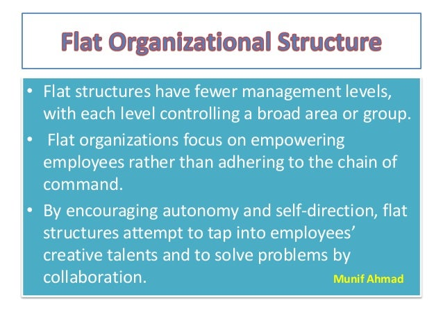 employee empowerment in flat organizations essay Essay about employee empowerment in flat organizations 616 words | 3 pages employee empowerment in flat organizations a flat organization is a culture of ownership.