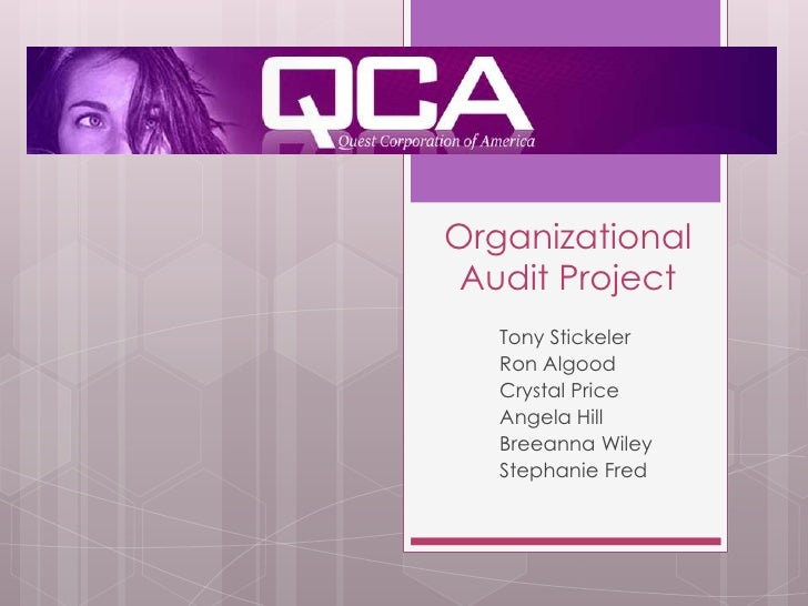Organizational Audit Project<br />Tony Stickeler<br />Ron Algood<br />Crystal Price<br />Angela Hill<br />Breeanna Wiley<b...