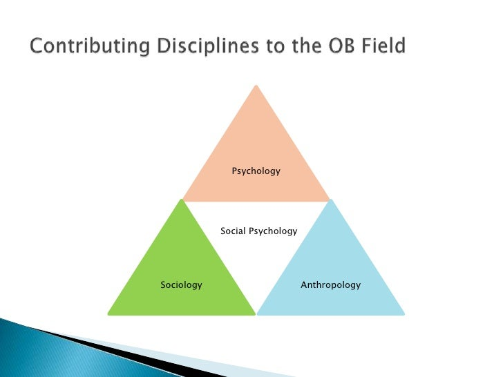 Disciplines in organizational behavior