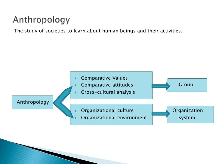 disciplines in organizational behavior Is the study of organizational processes, structures, and strategies, including understanding how groups of organization members behave this research draws on a number of fields, including human resources management, industrial and organizational psychology, organizational behavior, organizational communication,.