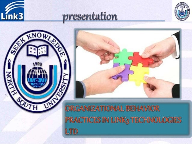 organizational behavioral practices in link technologies
