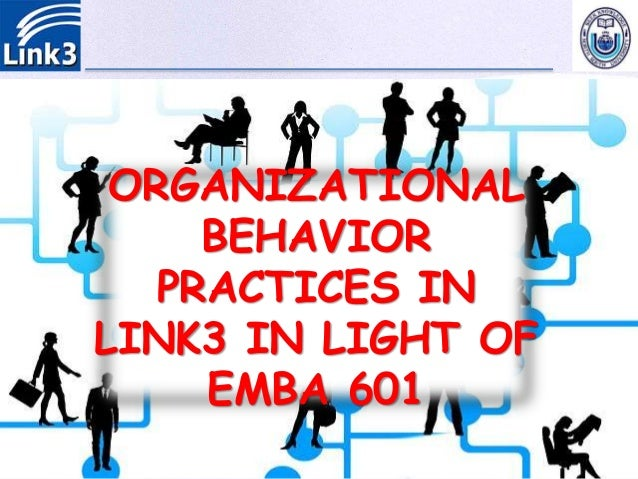 organizational behavioral practices in link technologies  members never point fingers at each other 43