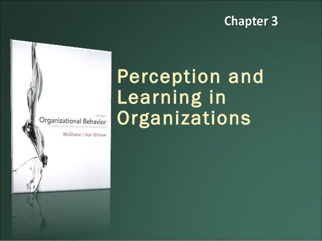 Organization behavior chapter 10 case