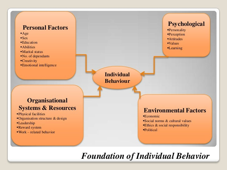 theory of personality in organizational behavior The foundation for the study and application of organizational behavior by  the  field, various types of behavior modification theories and techniques, analysis of   conflict and communication, perception, personality and attitudes, motivation,.