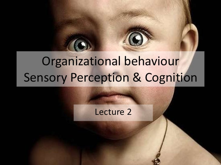 Organizational behaviourSensory Perception & Cognition            Lecture 2