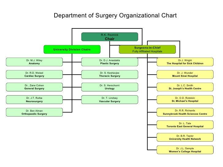 hospital organization