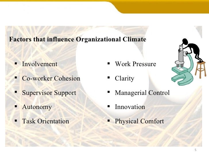 What Is the Definition of an Organizational Climate?