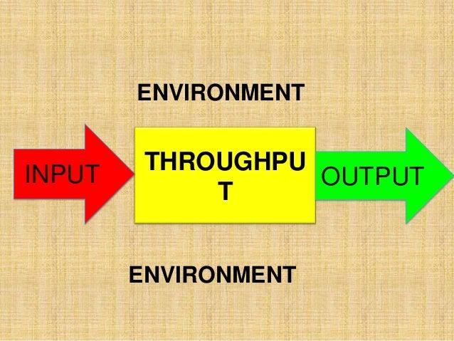 ENVIRONMENT ENVIRONMENT THROUGHPU T INPUT OUTPUT