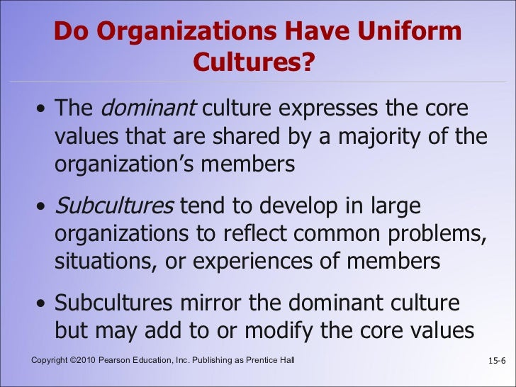 what is organizational culture pdf