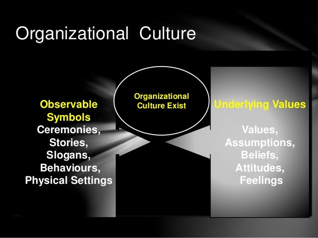 Organizational Culture And Ethical Values on primary socialization