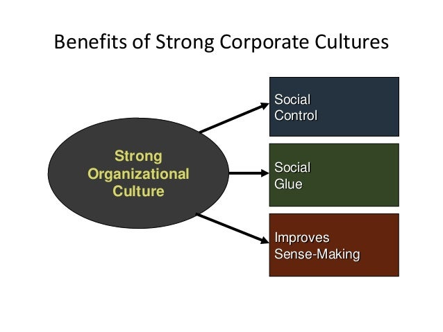 theory of organizational culture the climatic Testing a theory of organizational culture, climate and youth outcomes in child welfare systems: a united states national study .