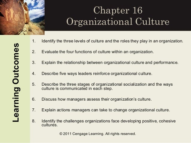 organizations as cultures A lack of fit may develop between the organization's culture and the demands of the competitive environment, or between the organization's culture and the demands of customers, or between the organization's culture and the style or personality of new leaders, or between the organization's culture and the cultures of other organizations with.