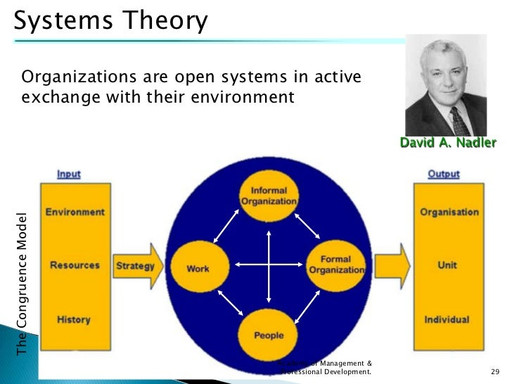 Organizational systems theory pdf