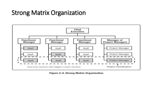 Organizational influences and project life cycle