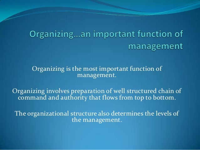 what advantages and disadvantages of a matrix type organization are apparent from this case 419 healthcare organizational structures advantages of matrix form simple, fast, and clearly apparent to employees.