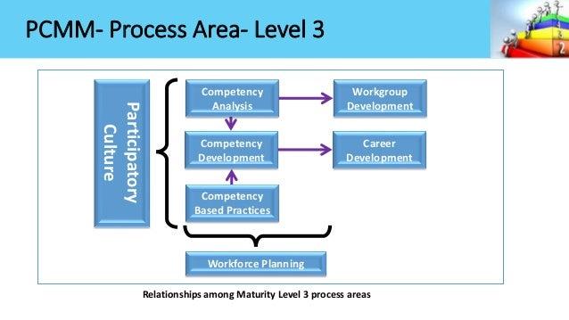 capability maturity model example