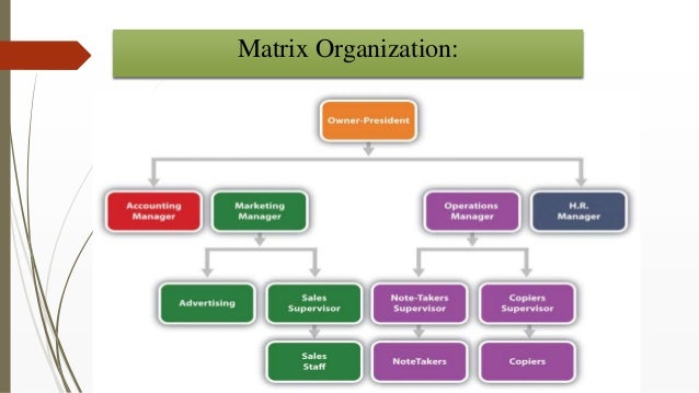 matrix departmentation What are the advantages and the disadvantages of departmentalization that the process of grouping different jobs into different units is called departmentation.