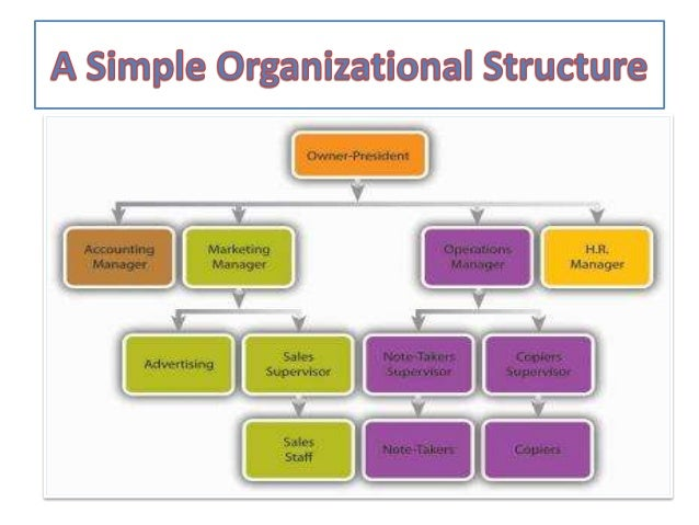 organizational structure of a company