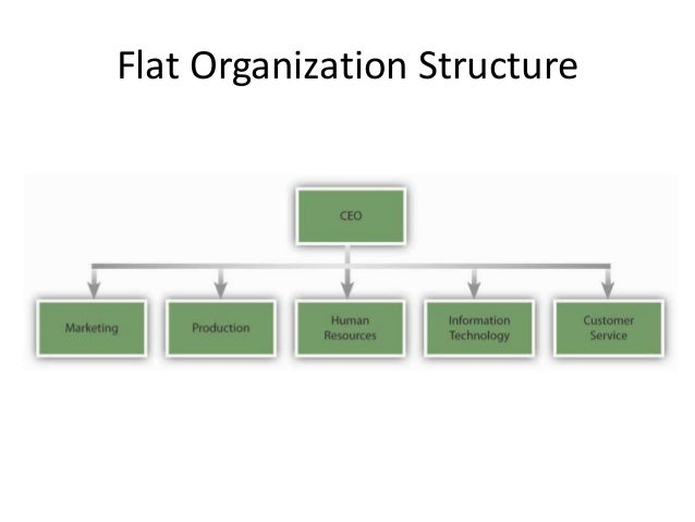 Flat organizational structure example business report