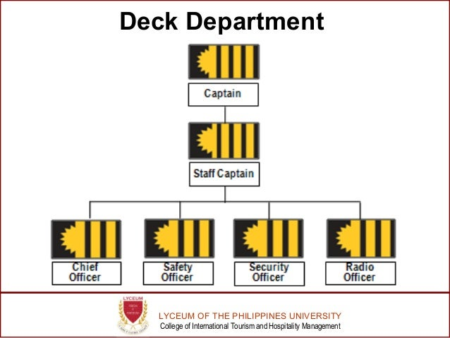 organizational chart of carnival cruise line
