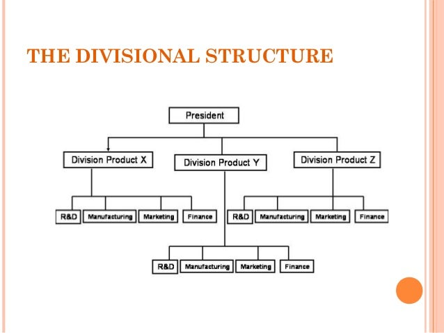 Organizational Structure And Design And Types