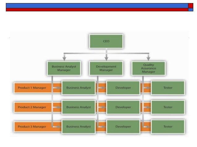 hmv organisation structure