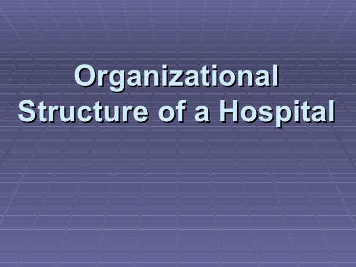organizational structure of a hospital you Premier system support organizational chart  miami valley hospital  organizational chart exec  you to civil liability per orc section 2305251 et  seq.