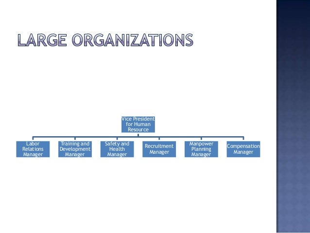 Organizational Structure Of A Human Resource Department