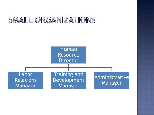 How to Structure an HR Team of Any Size