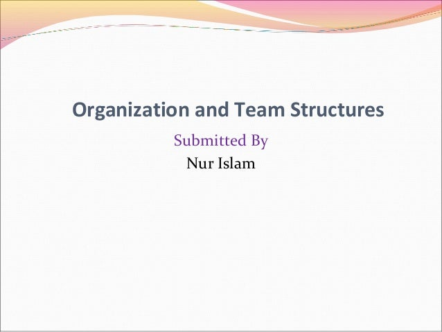 Organization and Team Structures Submitted By Nur Islam