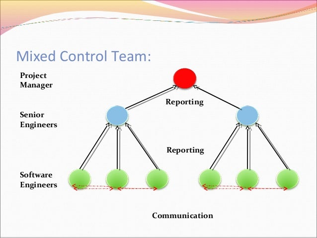 Organization and team structures