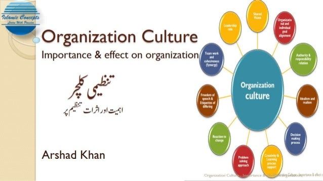 Organization culture and its impact