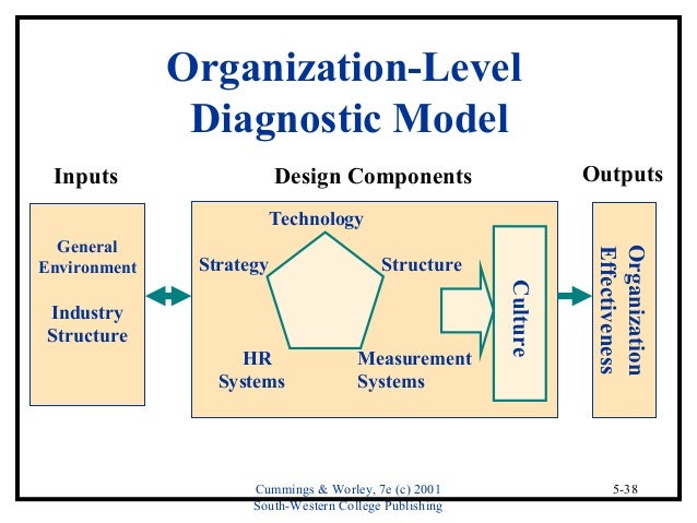 Organization analysis with social systems theory