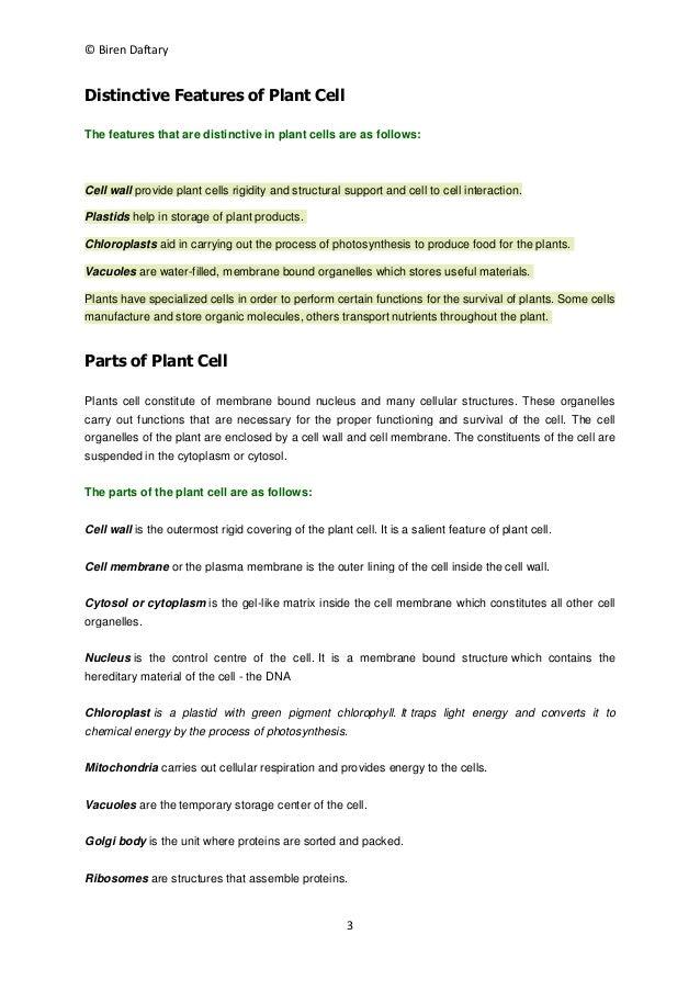 cellular organization definition