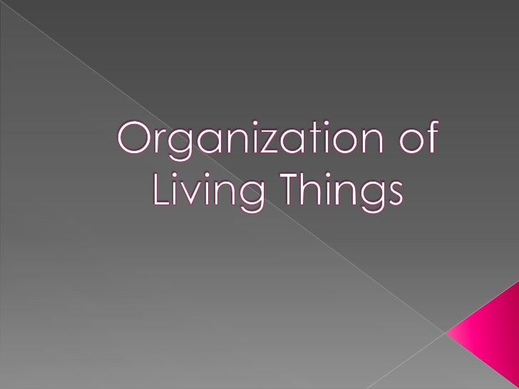 Organization of Living Things<br />