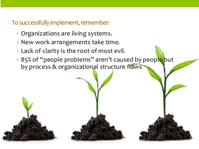 ORGANIZATIONSTRUCTURES  •Organizations are living systems.  •New work arrangements take time.  •Lack of clarity is the roo...