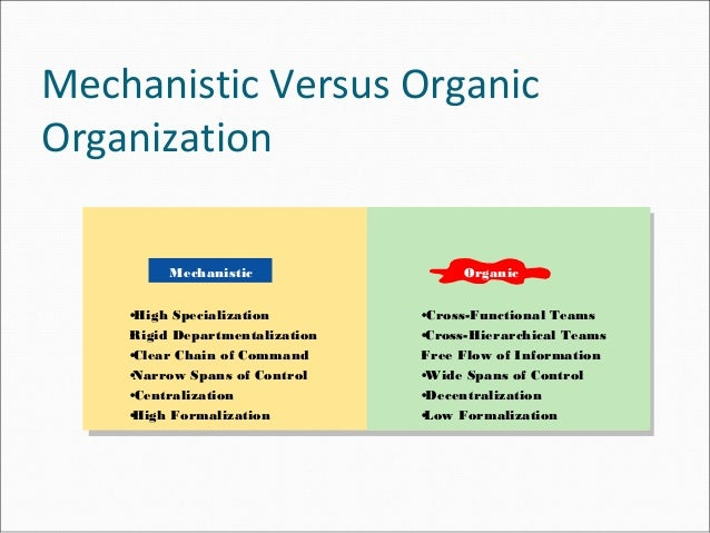 mechanistic vs organic organization structure essay Position-based reporting lines and thus stipulates who reports to whom 2 compare and contrast mechanistic versus organic organizations organic organizations are characterized by a low degree of specialization and formalization, a flat organizational structure and decentralized decision-making.