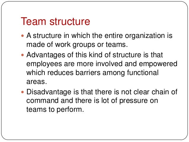Team structure A structure in which the entire organization ismade of work groups or teams. Advantages of this kind of s...