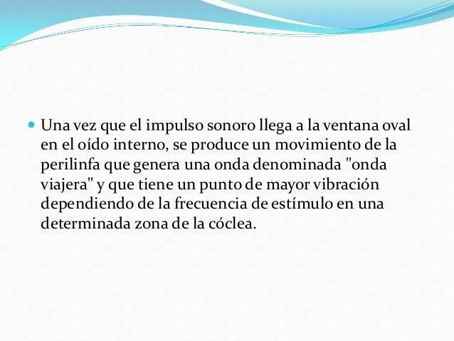 ÁREA PRIMARIA DE LA AUDICION Y ASOCIACIÓN AUDITIVA