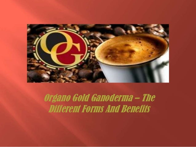Organo Gold Ganoderma – The Different Forms And Benefits