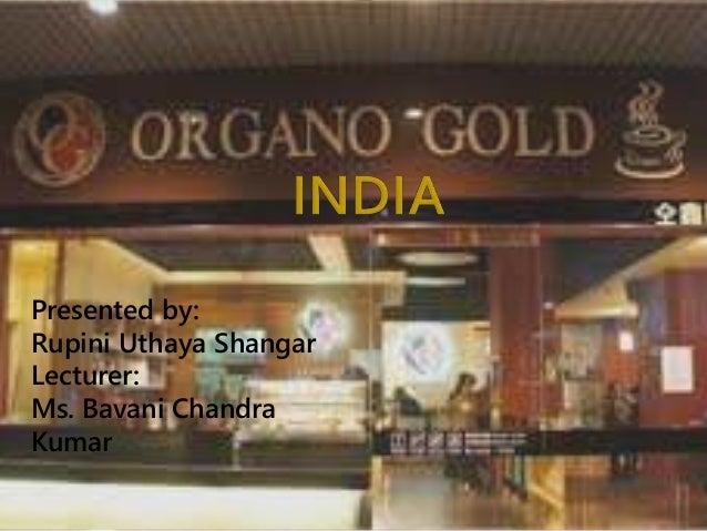 organo gold business plan