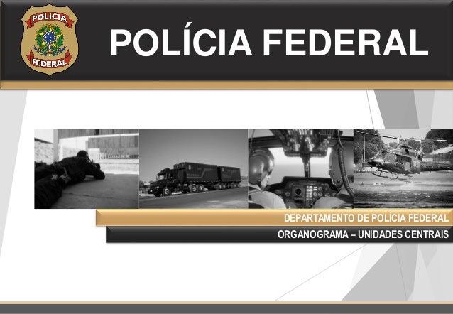 Organograma do departamento de pol cia federal 2015 for Oficina de policia