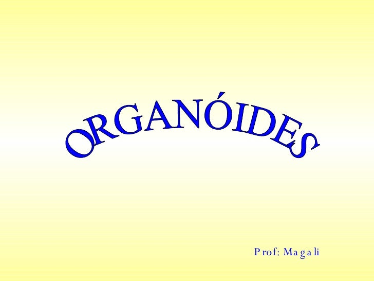 ORGANÓIDES Prof: Magali