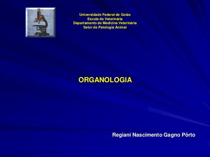 Universidade Federal de Goiás       Escola de VeterináriaDepartamento de Medicina Veterinária     Setor de Patologia Anima...