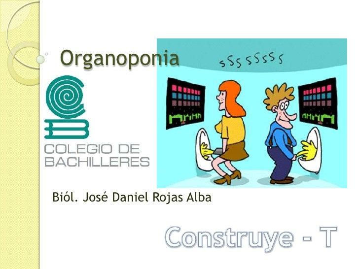 Organoponia<br />Biól. José Daniel Rojas Alba<br />Construye - T<br />