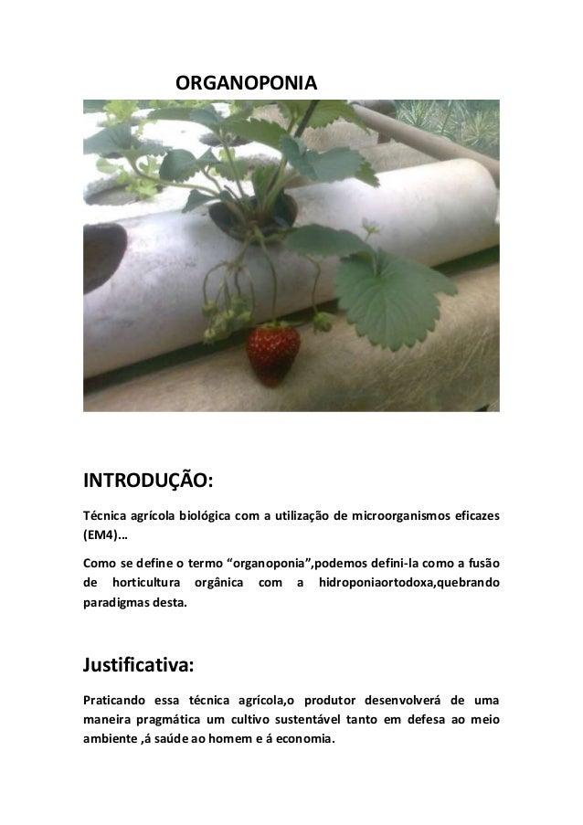 ORGANOPONIAINTRODUÇÃO:Técnica agrícola biológica com a utilização de microorganismos eficazes(EM4)...Como se define o term...