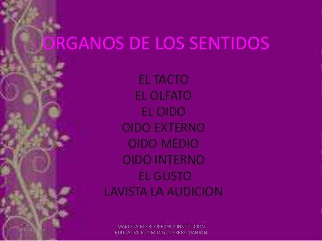 ORGANOS DE LOS SENTIDOS                    EL TACTO                   EL OLFATO                    EL OIDO                ...