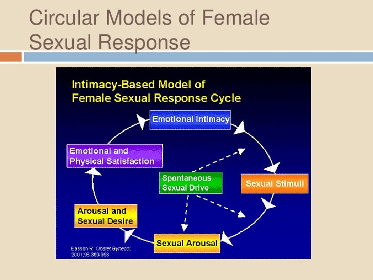 triphasic model of sexual response opposite