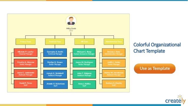 Organizational chart templates by creately quality assurance organizational chart template cheaphphosting Images