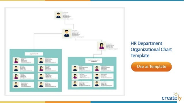 sample organizational chart template